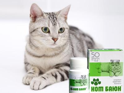 Кот Баюн для кошки