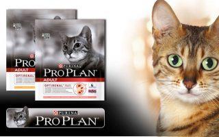 Про План корм для кошек (Pro Plan):