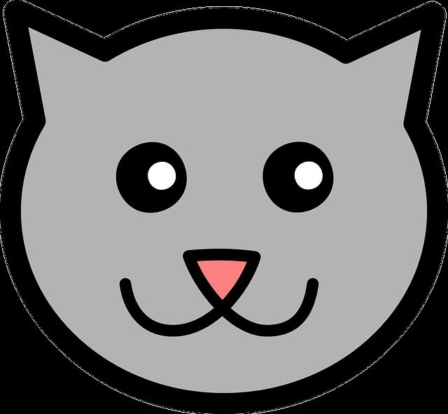 Админ-кот