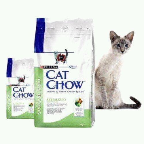 Кэт чау корм для кошек