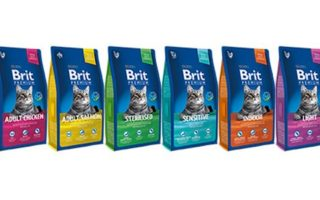 Brit корм для кошек