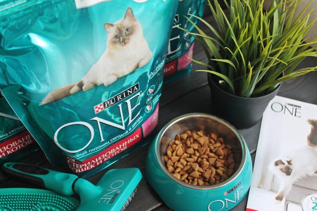 корм пурина для кошек
